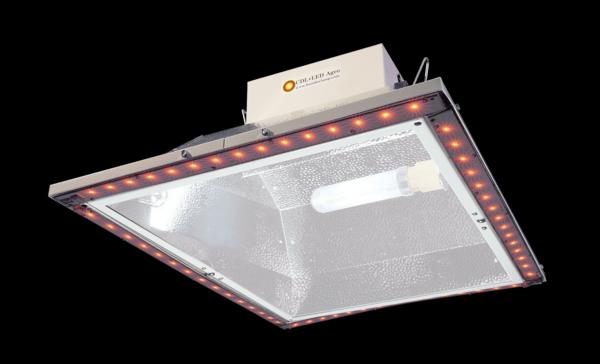 BLI 315W CDL+LED Agro, Products