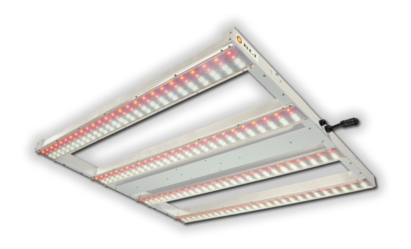 BLI PerfectPar 650W, Products